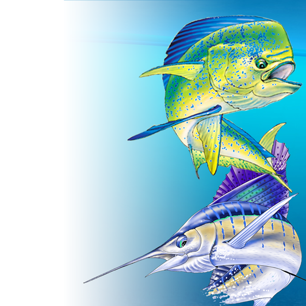 Offshore World Championship Results - Sport Fishing Shirts